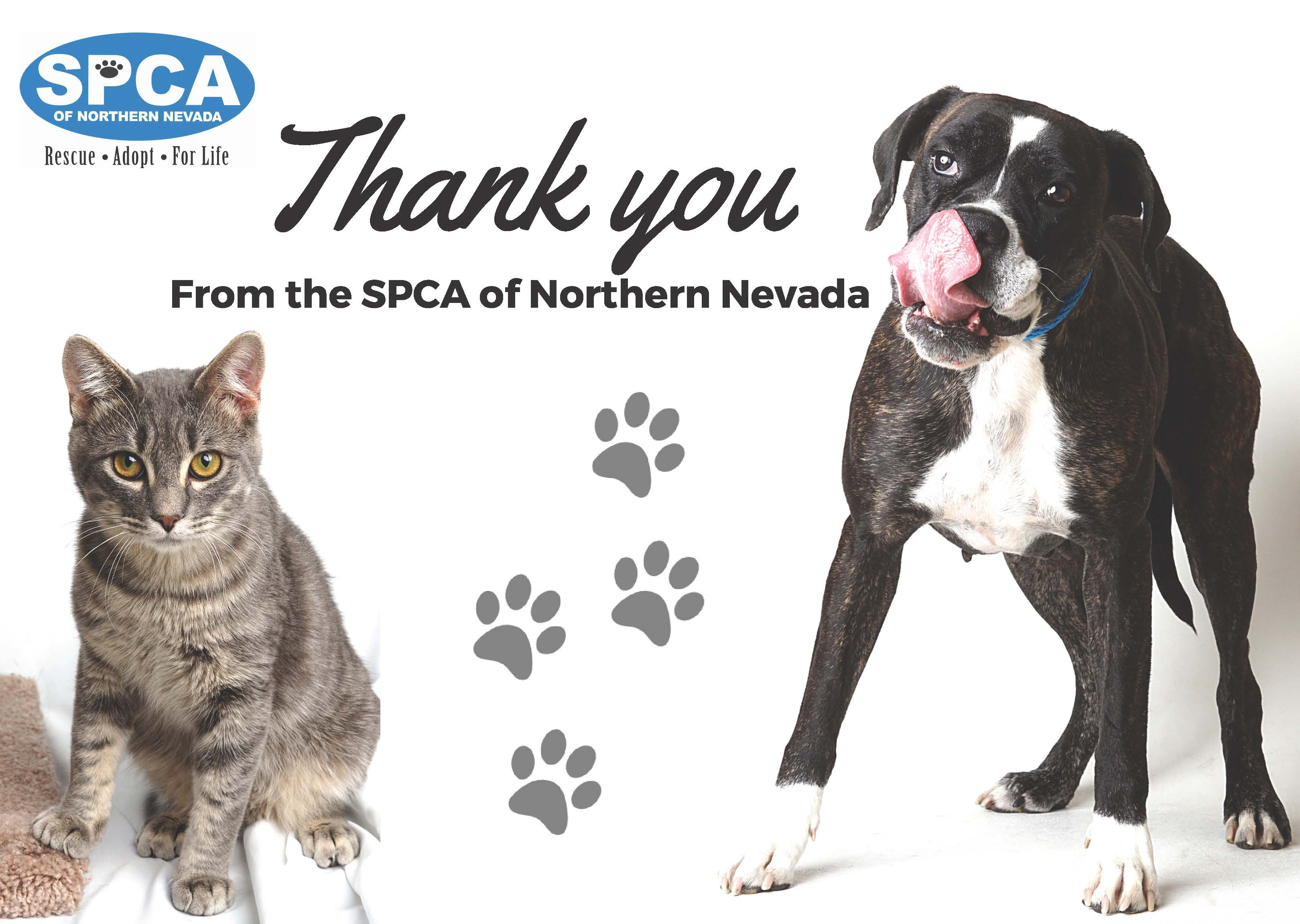Thank you Card from the SPCA of Northern Nevada featuring a cat and a dog.