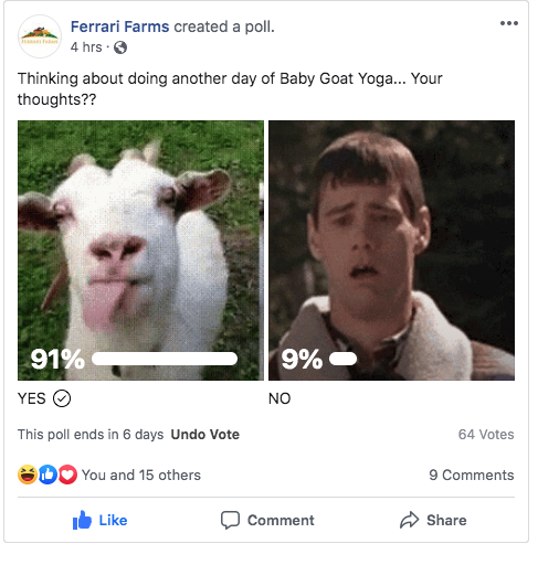 Facebook post from the farm asking users if they should run the Goat Yoga event again. 91% said yes.
